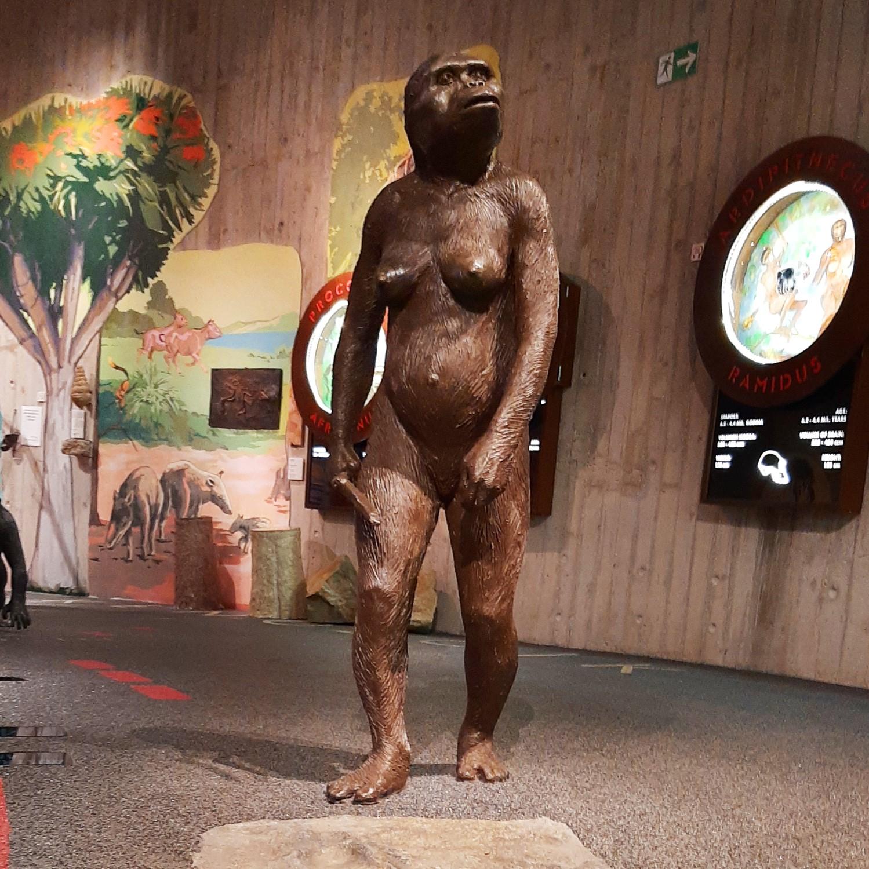 U potrazi za precima – Muzej krapinskih neandertalaca